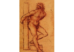 R1-209 Leonardo da Vinci - Studie nahoty