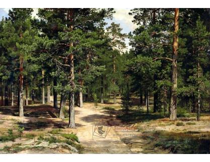 VR-338 Ivan Ivanovič Šiškin - Sestroretsky les