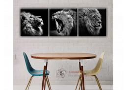 ART 09, obrazový set 3D 50x50cm