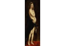 DDSO-2515 Peter Paul Rubens - Helena Fourment v kožichu