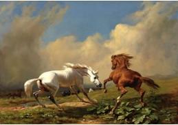 DDSO-4210 Rudolf Koller - Koně v blížící se bouři