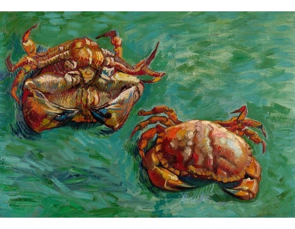 VR2-509 Vincent van Gogh - Dva  krabi