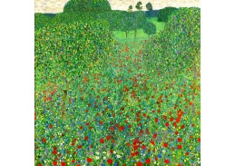 D-8299 Gustav Klimt - Kvetoucí máky
