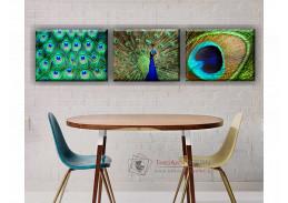 ART 05, obrazový set 3D 50x40cm