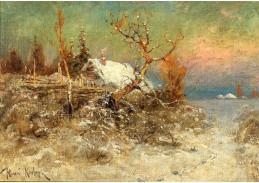 D-9533 Julius Sergius Klever - Zima na pobřeží Baltského moře
