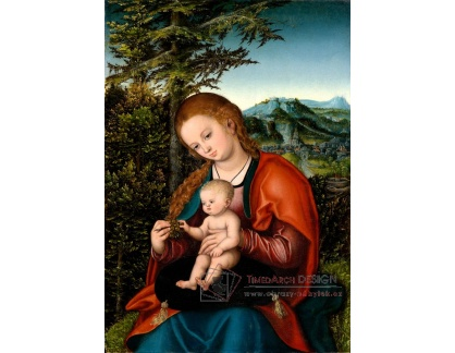 VlCR-130 Lucas Cranach - Madonna s dítětem