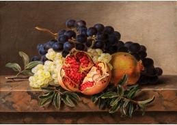 A-1338 Johan Laurentz Jensen - Granátová jablka, zelené a modré hrozny na mramorovém rámu