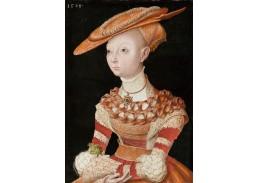 D-6086 Lucas Cranach - Podobizna mladé dámy držící kapradí