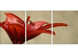 Obraz - Triptych 3D-1314