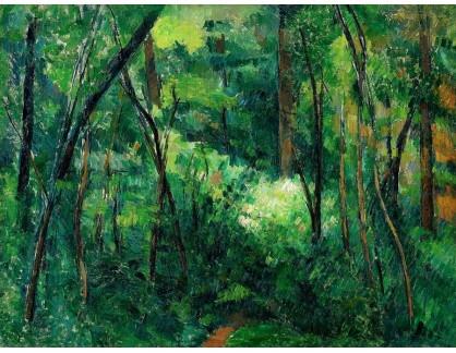 VR10-44 Paul Cézanne - V lese