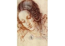 R1-238 Leonardo da Vinci - Studie hlavy Ledy