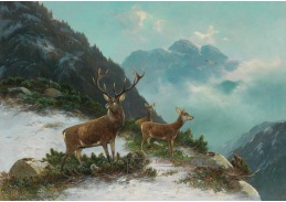 D-5965 Moritz Mueller - Ve vysokých horách