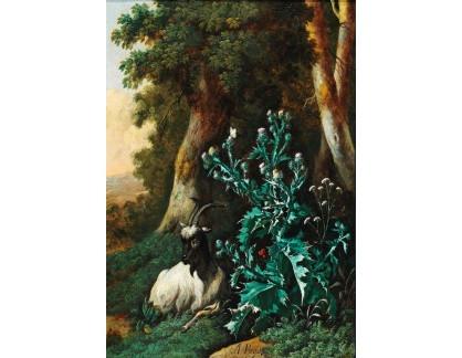Slavné obrazy I-DDSO-1 Abraham Begeyn - Zalesněná krajina s kozou a bodláčím
