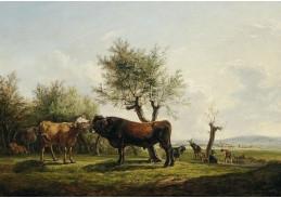 DDSO-4983 Friedrich Gauermann - Kráva a býk na pastvě