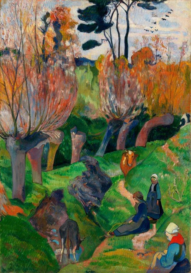 R9-133 Paul Gauguin - Vrby