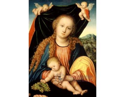 VlCR-129 Lucas Cranach - Madona s dítětem