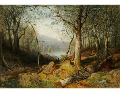 VCM 723 Julius Eduard Mařák - Průhled bukovym lesem