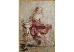 VRU08 Peter Paul Rubens - Únos Europy