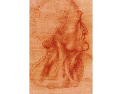 R1-237 Leonardo da Vinci - Studie hlavy Jidáše
