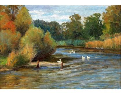 Slavné obrazy IX DDSO-697 Hugo Darnaut - Kachny na rybníku