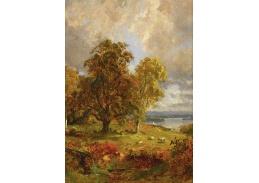 Krásné obrazy II-100 Jasper Francis Cropsey - Krajina se stromy a ovcemi poblíž lesíka