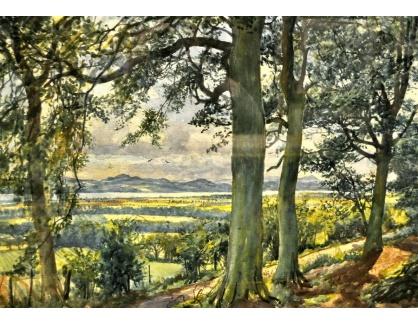 Krásné obrazy IV-41 James McIntosh Patrick - Krajina