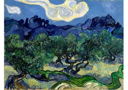 R2-1005 Vincent van Gogh - Olivovníky