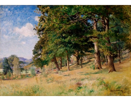 Slavné obrazy XVI-127 Alfred Wahlberg - Lesní kopec