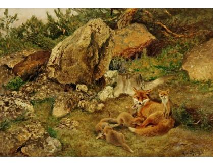 Slavné obrazy III-DDSO-492 Bruno Liljefors - Liščí mláďata