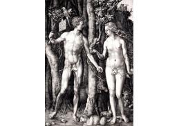 VR12-6 Albrecht Dürer - Adam a Eva
