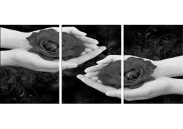 Obraz - Triptych 3D-6126