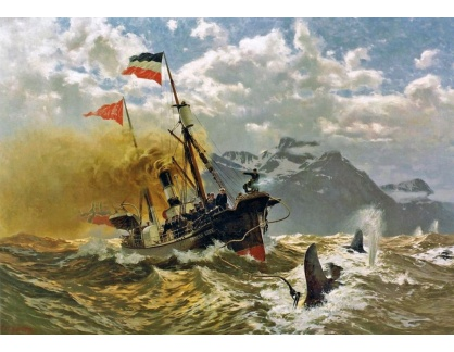 VN-237 Carl Saltzmann - Císař Wilhelm II na lovu velryb