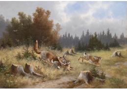 Slavné obrazy VIII-166 Moritz Müller - Liška na lovu zajíce