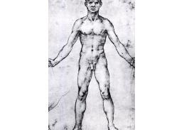 R1-206 Leonardo da Vinci - Studie mužské postavy