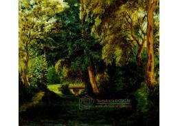 DDSO-2265 Eugene Delacroix - Zahrada George Sand v Nohantu