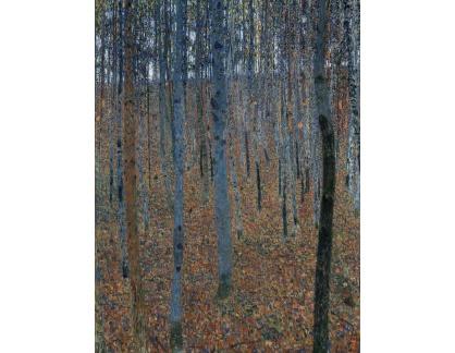 VR3-130 Gustav Klimt - Bukový les