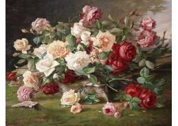 SO XII-102 Neznámý autor - Květinové zátiší