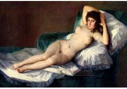 Francisco de Goya - Nahá Maja, 60x40cm