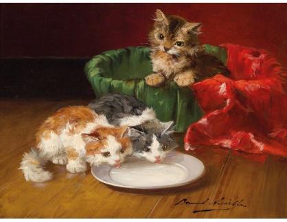 KO III-45 Alfred de Neuville - Koťata u mléka