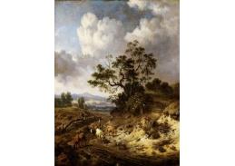 DDSO-2366 Jan Wijnants - Kopcovitá krajina s krávami