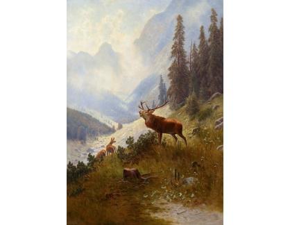 Krásné obrazy II-362 Ludwig Sckell - Burácející jelen v horách