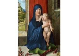 VR12-30 Albrecht Dürer - Madonna s dítětem