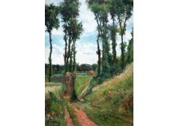 R9-101 Paul Gauguin - Topoly