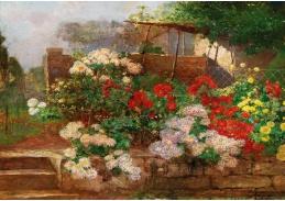 DDSO-3593 Hugo Charlemont - Zahrada v Brioni