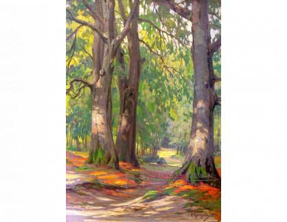 VN-364 Arnold Lyongrün - Podzim v lese