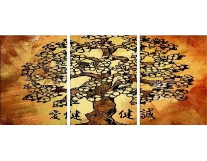 Obraz - Triptych 3D-6203