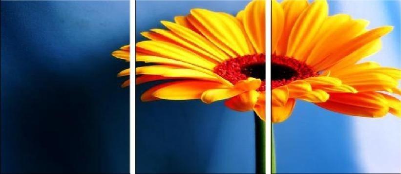 Obraz Triptych 3d 4071 Obrazynaplátněcz