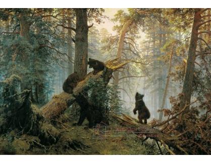 VR72 Ivan Ivanovič Šiškin - Jitro v borovicovém lese