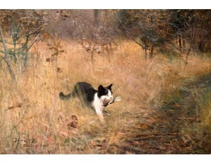 Slavné obrazy VI-146 Bruno Liljefors - Kočka na lovu ptáků