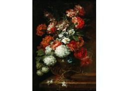 DDSO-4385 Francesco Volo - Zátiší s květinami